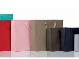 Busta Elegance Colorata (24x8x20+5) Pz 200