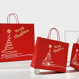 Busta Merry Christmas (50+15x44+6) Pz 100